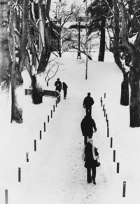 1971 Students in the Snow