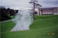 1996 Steam Sculpture