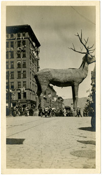 Elk mascot in the Parade of the Fraternal Order of the Elks, Butte, Montana, 1916
