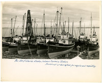 Small fleet of Pacific American Fisheries' salmon cannery tenders rest in drydock