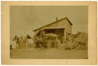 Two un-hitched wagons, and one wagon hitched to four horses, are loaded with cut fuel wood, with shed in background