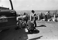 1972 Students Picking Up Garbage on Sehome Hill Arboretum
