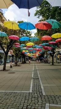 Umbrella Street - Blagoevgrad, Bulgaria