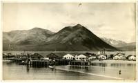 Pacific American Fisheries King Cove Alaska salmon cannery