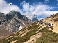 Wildlands Studies - Nepal