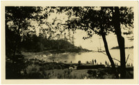 View through trees of beach on cove with people gathered along shore
