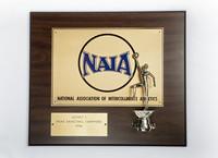 Basketball (Men's) Plaque: NAIA District 1 Champions, 1994