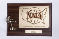 Soccer (Men's) Plaque: NAIA Area Champion, 1989