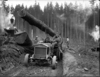 Log suspended by cables being loaded onto skidder.