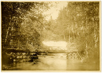 Log bridge over Whatcom Creek, with falls in the background
