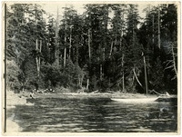 A tiny sailboat is anchored in a cove surrounded by forested shores