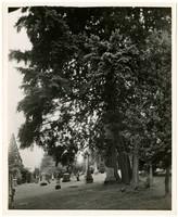 The gravestone of James Tilton Pickett in River View Cemetery, Portland, Oregon