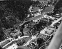 1960 Aerial View Of Campus