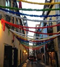 Festival in Bairro Alto - Lisbon, Portugal