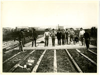 A dozen men standing on the leading edge of the plank road they are constructing