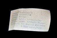 view 5 - info card