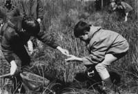 1970 Outdoor Activities