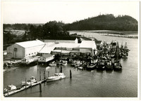 Small marina with fishing vessels and other water craft next to warehouse or canning facility, on narrow waterway with forested hills in background