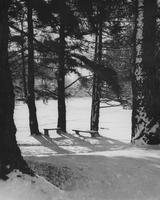 1959 Snowstorm