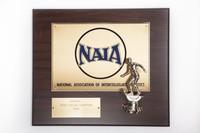 Soccer (Men's) Plaque: NAIA District 1 Champions, 1990