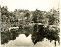 An overgrown, derelict bridge spans Whatcom Creek with fenced field and orchard in background
