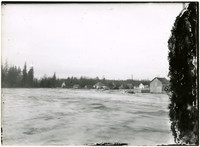 Flooding waters of Nooksack river rush by with buildings of Ferndale, WA, in background