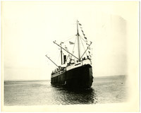 "View of bow of Pacific American Fisheries' passenger freight ship ""Catherine D.""  with banners waving"