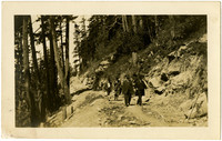 Four men in suits walk forested hillside path