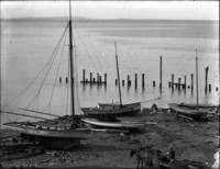 Shoreline on Bellingham Bay with four, small, single-masted sailboats resting on the beach.