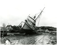 """Pacific American Fisheries vessel """"Hekla"""" beached with other craft"""