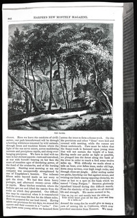 Mountaineering on the Pacific (copy of page 6 of article from Harper's New Monthly Magazine)