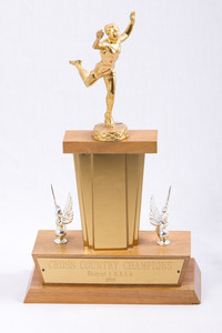 Cross-Country Running (Men's) Trophy: NAIA Champions District 1, 1958