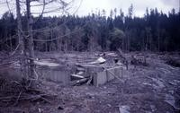 Ruins of Weyerhaeuser logging camp on North Fork of Toutle River.