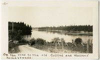 The road to the old Collins' and Walters' homesteads