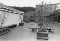 1973 Library: Sun Deck