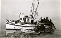 Multiple fishermen haul nets onto deck of fishing vessel