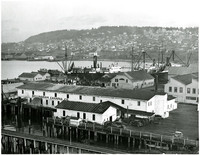South Bellingham's industrial waterfront facilities with Bellingham Cannery in foreground, several fishing vessels moored in background
