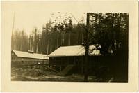 Bloedel-Donovon Lumber Mill buildings