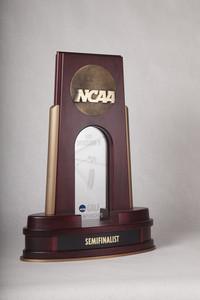 Golf (Men's) Trophy: NCAA Division 2 Championship Semifinalist, 2013