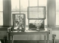 1944 Classroom Projects (Science)