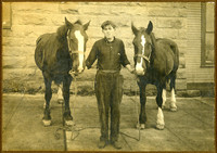 Young man standing between two work horses, holding their bridles