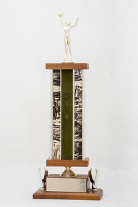 Basketball (Women's) Trophy: NCWSA Regional Champs (front), 1974