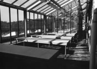 1974 Environmental Studies Building: Interior of Greenhouse