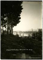 View through trees and bushes of Skagit River near Burlington, WA