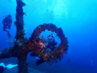 Between the Breaths - Leeward Islands