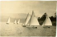 Six small racing sail boats on water
