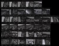 "1965 Orca Whale ""Namu"" (Negative Set #2 of 3)"