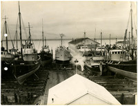 Fishing boats in dry dock at the Pacific American Fisheries (PAF) shipway at the west end of Harris Avenue at Deadman's Point in Fairhaven