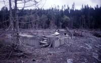 Ruins of Weyerhaeuser logging camp on North Fork of Toutle River.