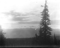 View across forest to unidentified mountain range